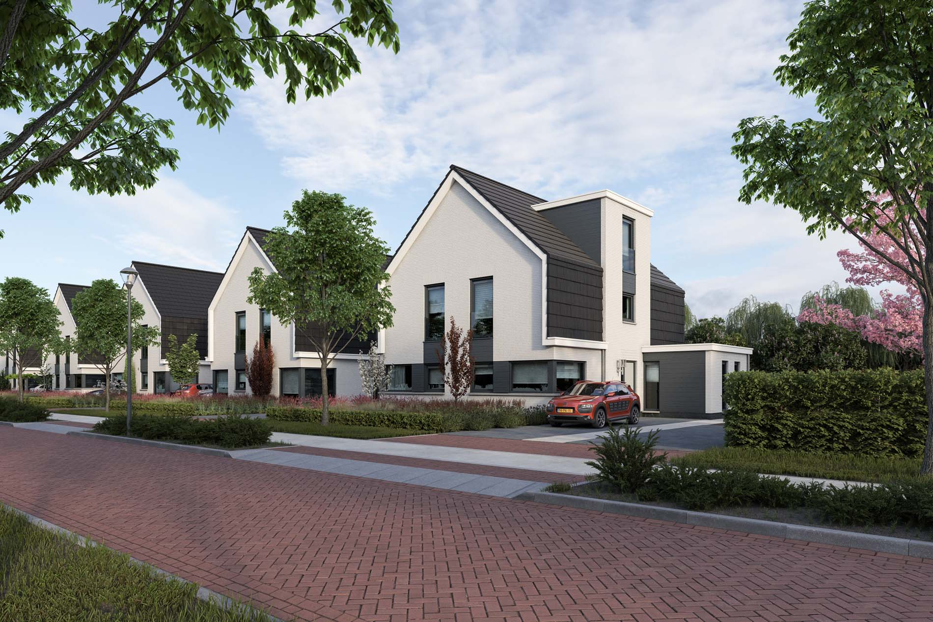 Project - Kloostervelden in Sterksel
