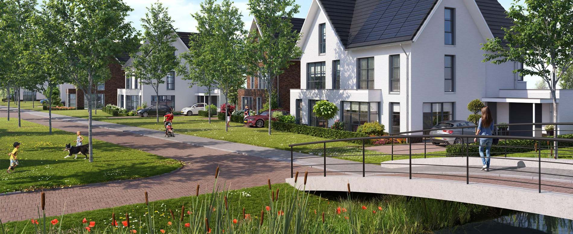 Project - Hervensche Park in 's Hertogenbosch